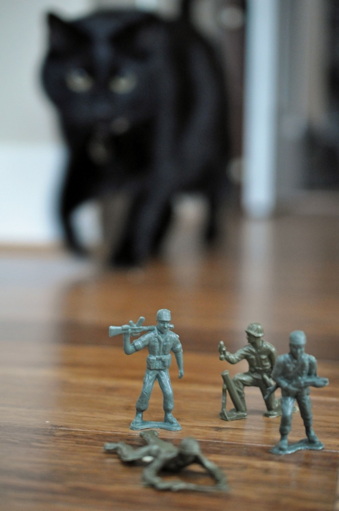 Gus & the Army Men -- A Love Story Told in Photos (2/6)