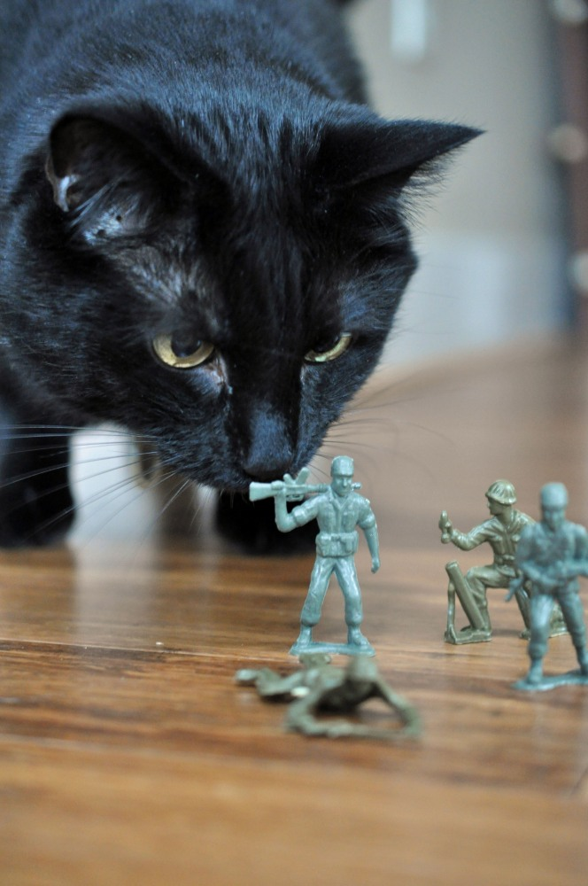 Gus & the Army Men -- A Love Story Told in Photos (3/6)
