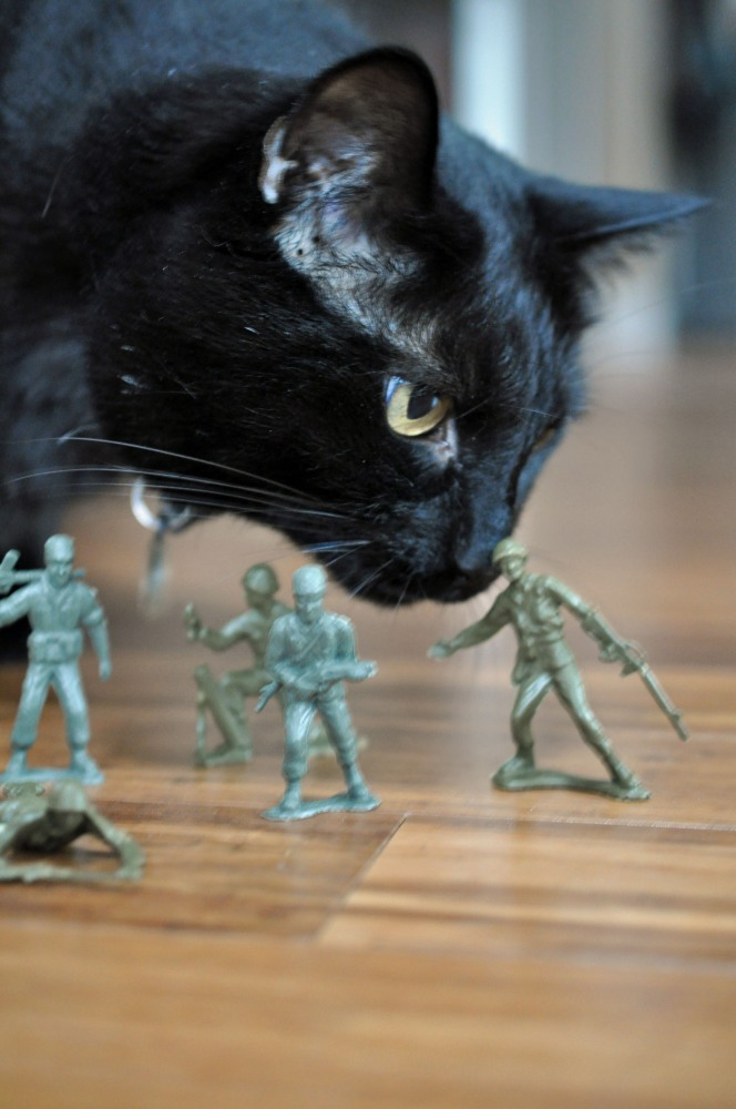 Gus & the Army Men -- A Love Story Told in Photos (4/6)