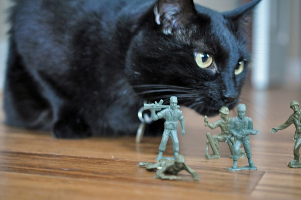 Gus & the Army Men -- A Love Story Told in Photos (5/6)