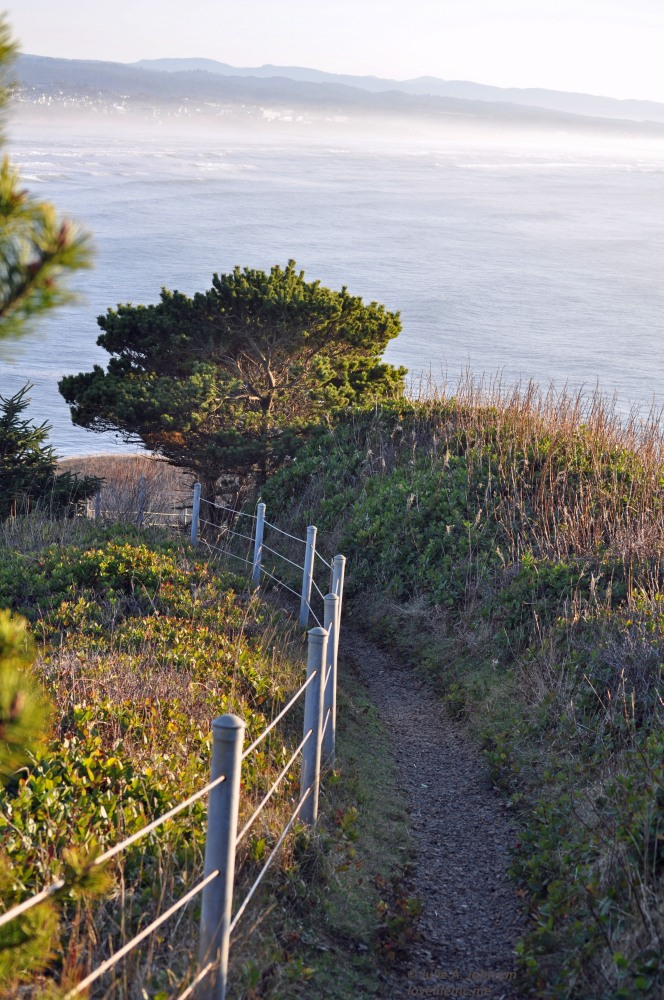 Hiking Yaquina Head (5/6)