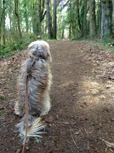 Hiking 01