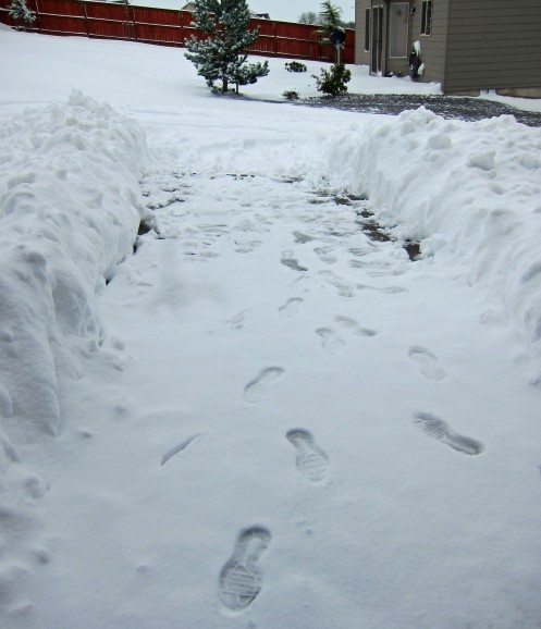 Snow II 01