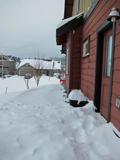 Snow II 02