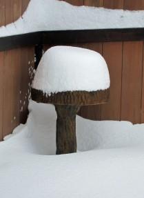 Snow II 03a